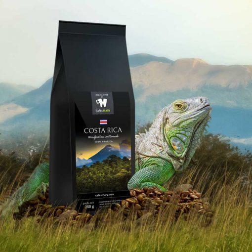 café du costa rica