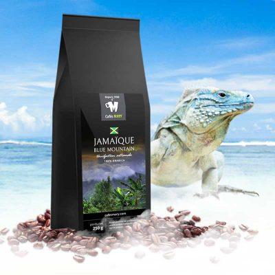 café de Jamaique